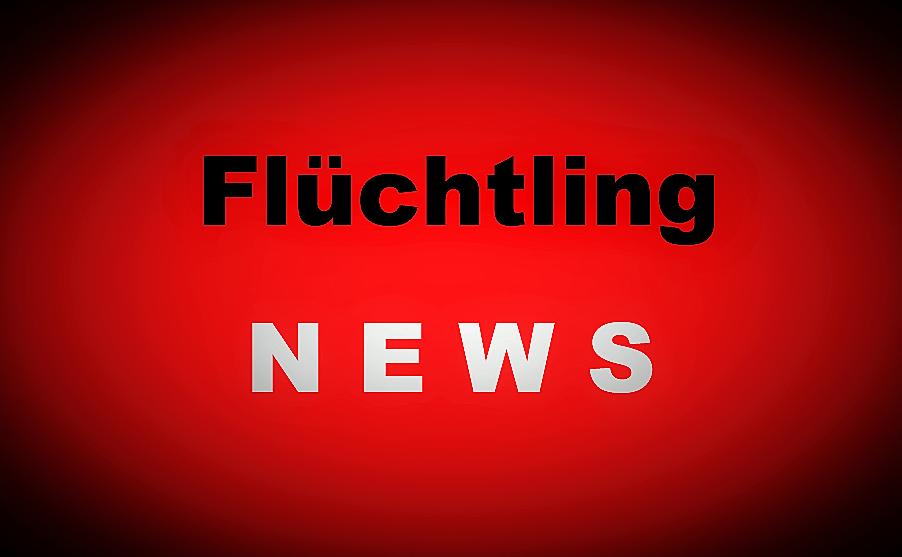 Flüchtling NEWS