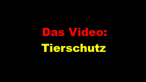 Tierschutz Video