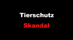 Tierschutz-Skandal