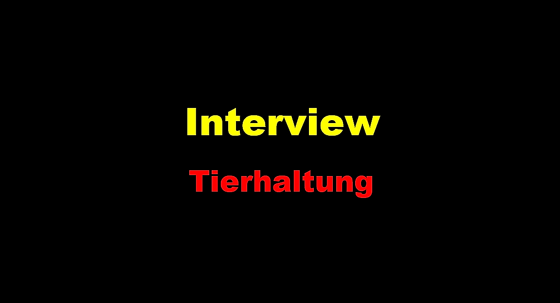 Interview Tierhaltung