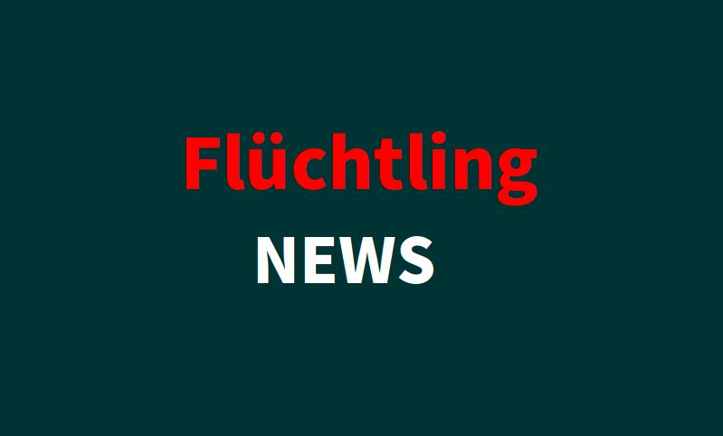 Flüchtling-NEWS