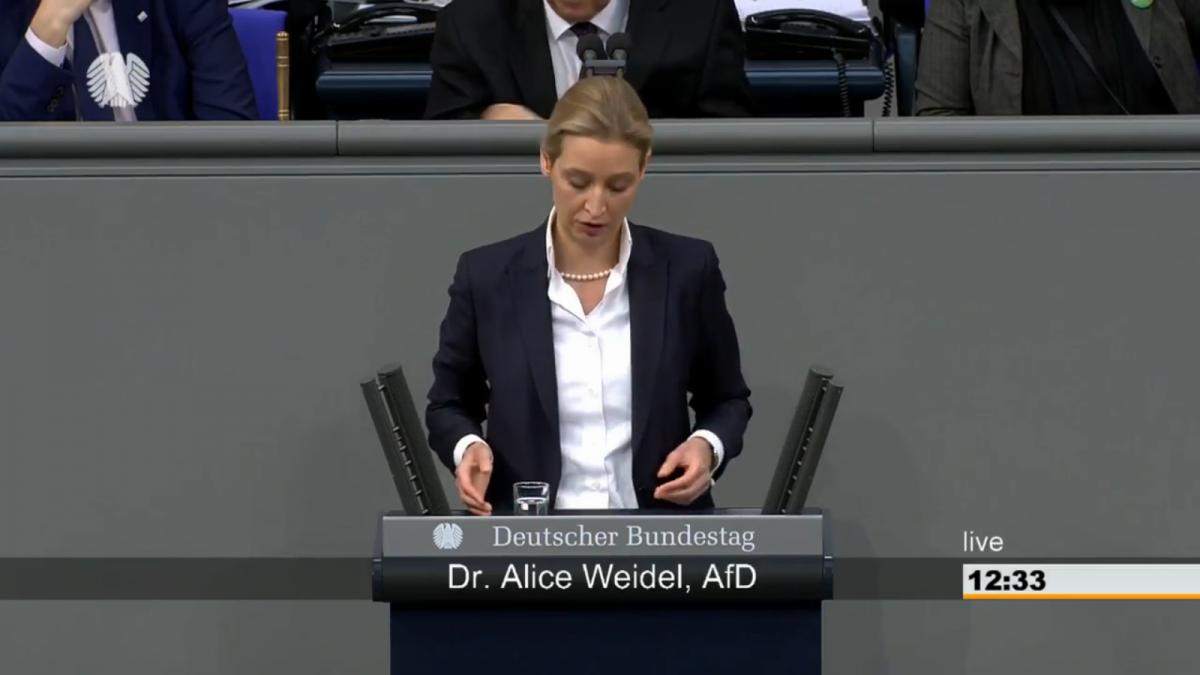 """Screenshot Quelle """"Deutscher Bundestag"""""""