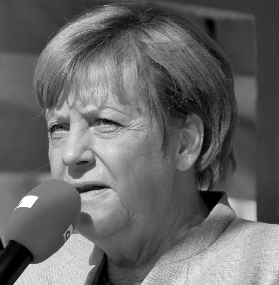 Merkel-Kritiker