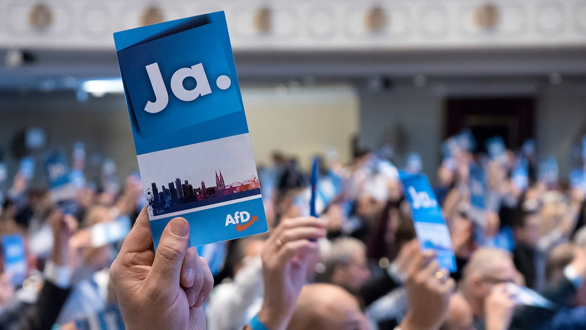 """Quelle: """"obs/Alternative für Deutschland (AfD)/AfD"""""""