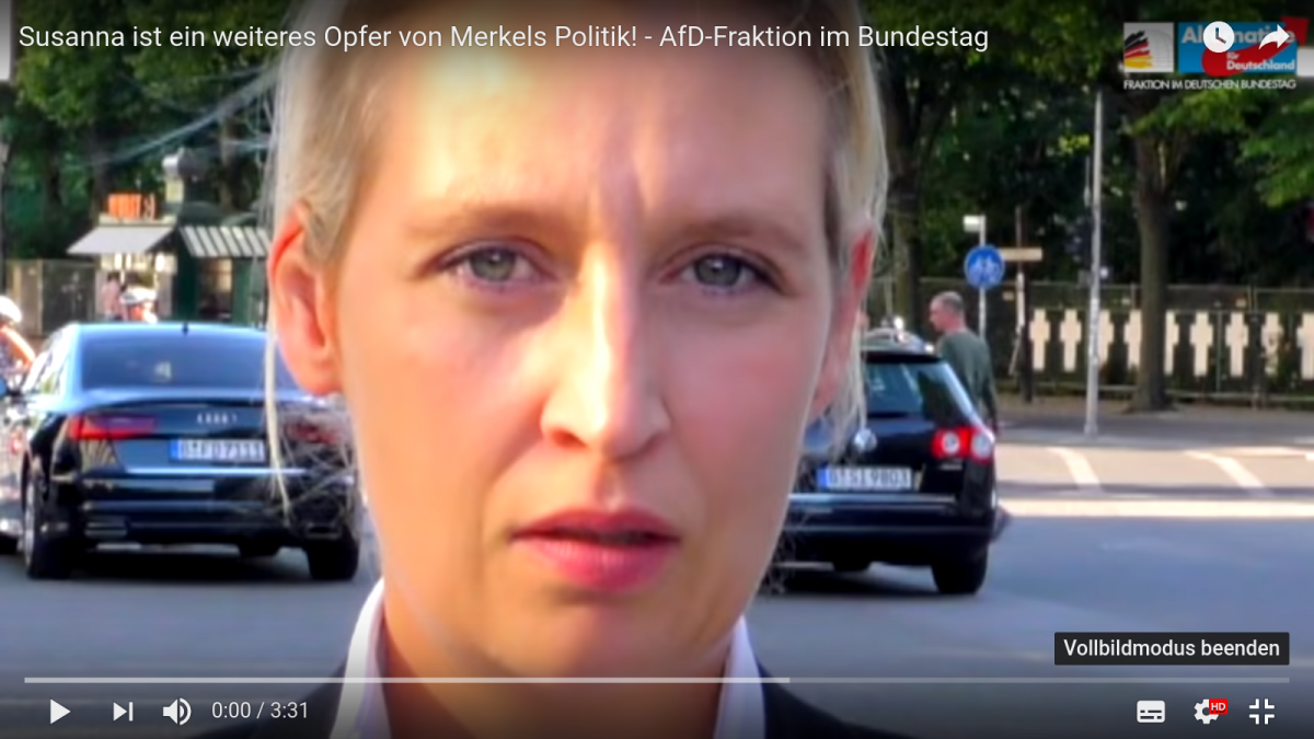 Foto by: You-Tube AfD-Fraktion Bundestag