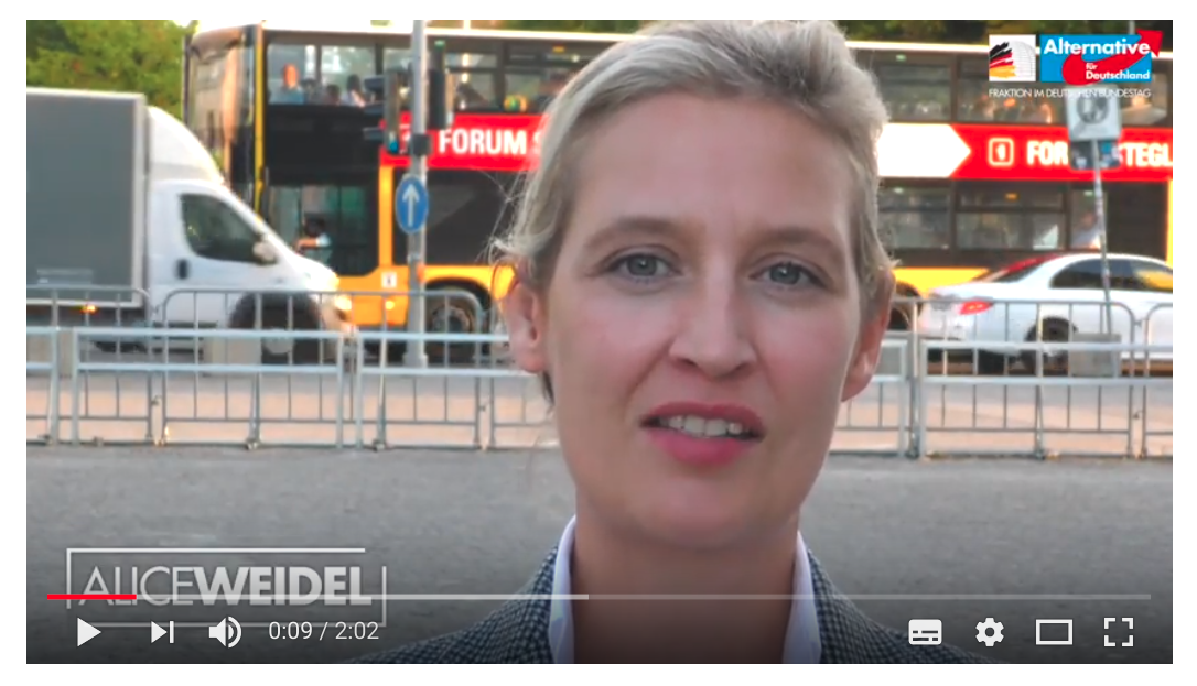 Foto by: Screenshot Alice Weidel Demonstrationsrecht YouTube