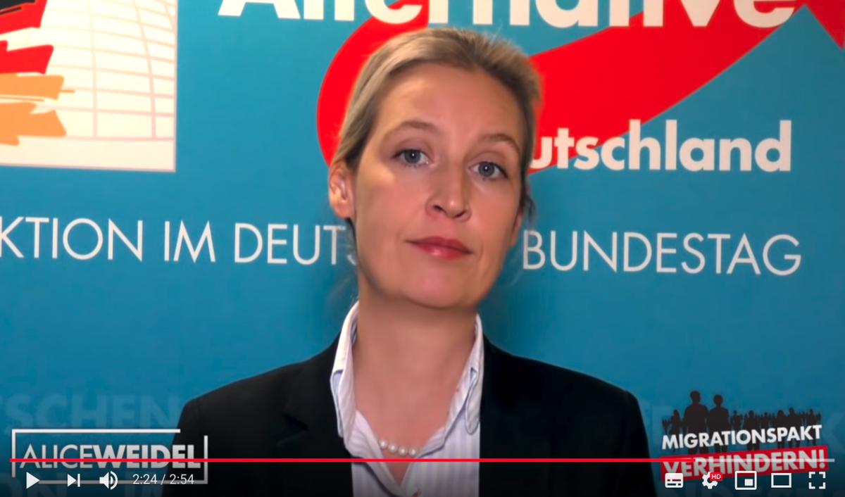 Foto by: Screenshot Youtube Alice Weidel Migrationspakt