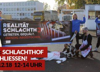 Bild Quelle: http://www.tierschutzbuero.de/realitaet-schlachthof/oldenburg-demo/